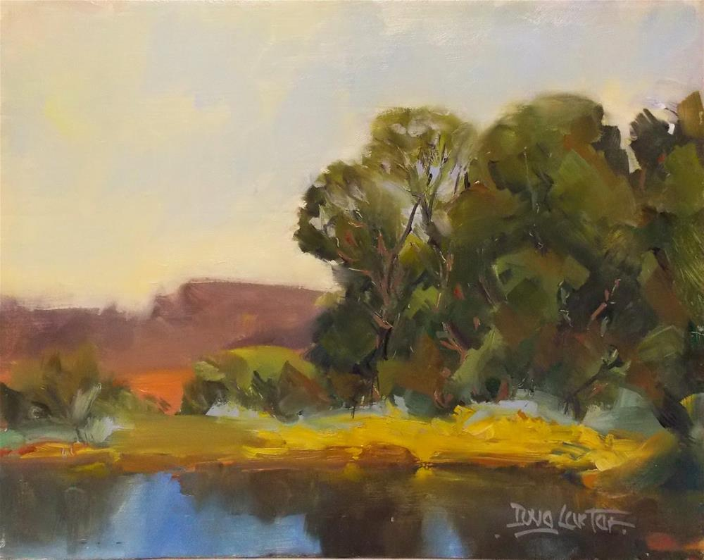 """ LAKESIDE VIEW "" original fine art by Doug Carter"