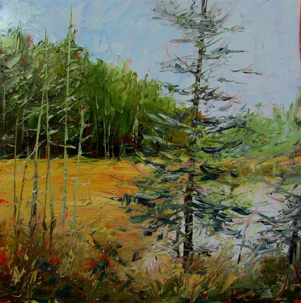"""8 x 8 inch oil Lone Ranger"" original fine art by Linda Yurgensen"