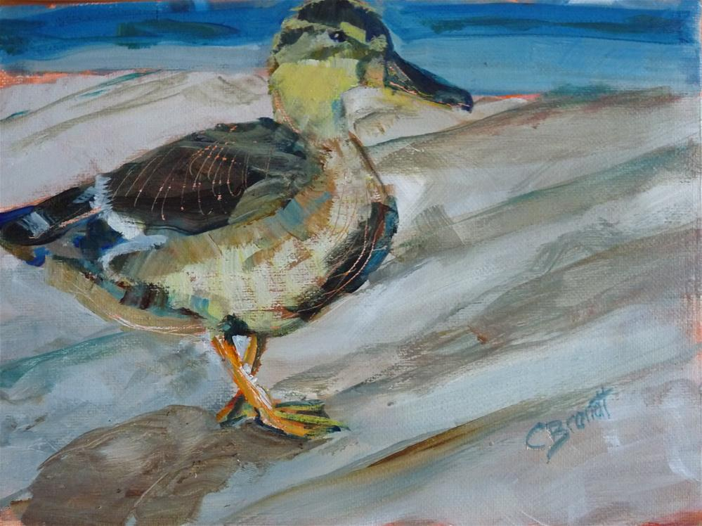 """Duck"" original fine art by Claudia Brandt"