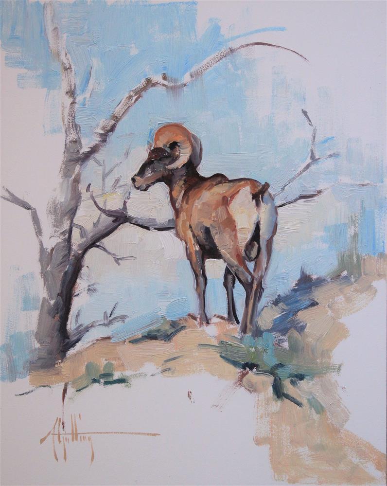 """Ram Study #1"" original fine art by Abigail Gutting"