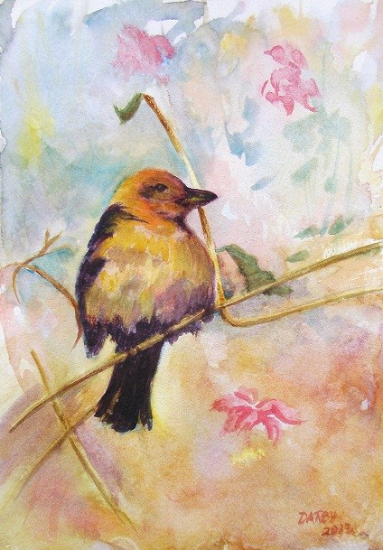 """Tanager 1"" original fine art by Lynn Darby"