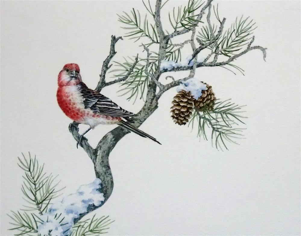"""""""Pine Grosbeak"""" original fine art by Jean Pierre DeBernay"""