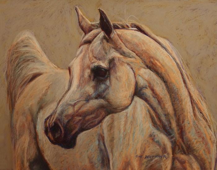 """""""Gray Arabian Horse"""" original fine art by Sue Deutscher"""