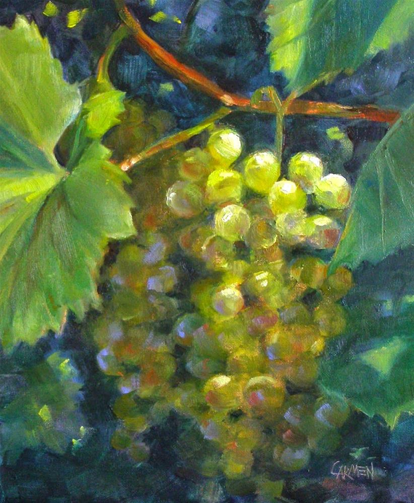 """Green Grapes, 8x10 Oil Painting on Canvas Panel"" original fine art by Carmen Beecher"