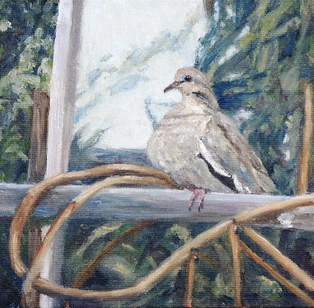 """Lonely Dove"" original fine art by Candi Hogan"