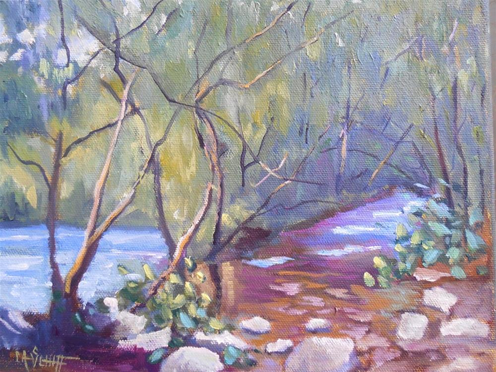 """Landscape Painting, Daily Painting, Small Oil Painting, Deep Creek by Carol Schiff 8x10 Original"" original fine art by Carol Schiff"