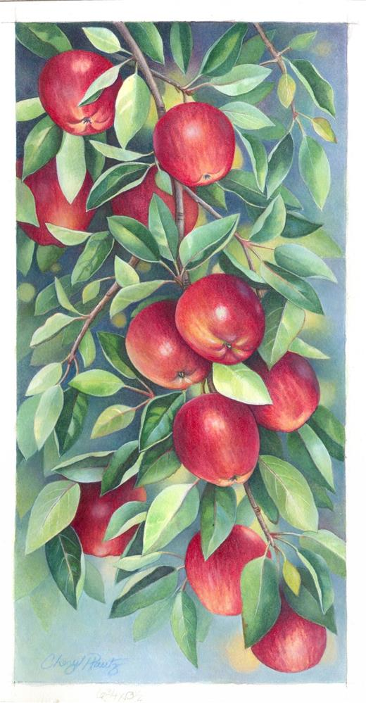 """Apple Orchard"" original fine art by Cheryl Plautz"