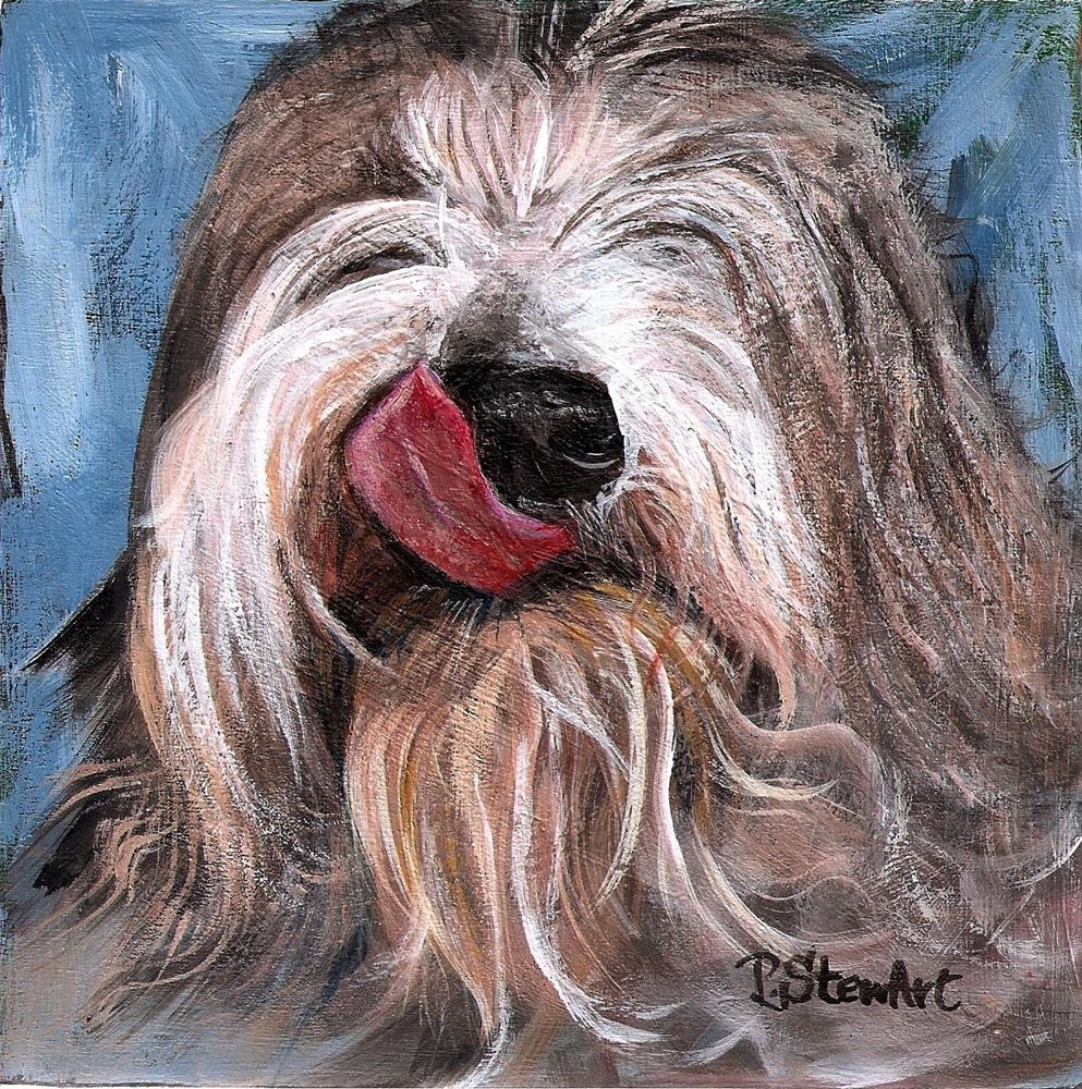 """6x6 Max Sheepdog Cattle dog Bearded Collie Acrylic by Penny Lee StewArt"" original fine art by Penny Lee StewArt"