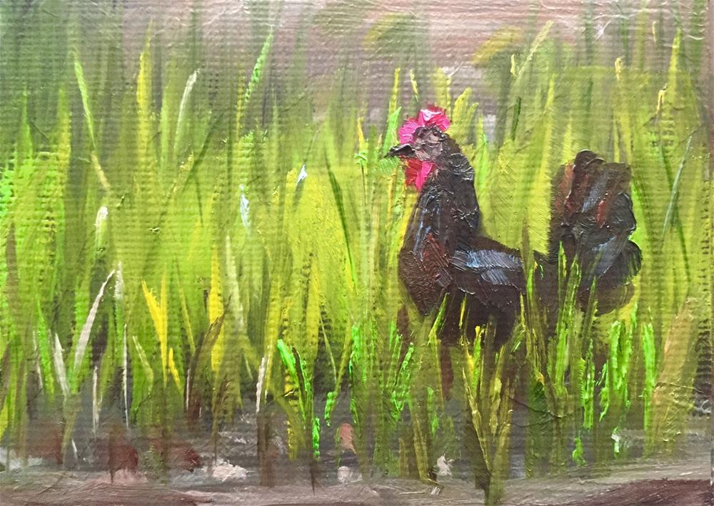 """Black Hen"" original fine art by Gary Bruton"