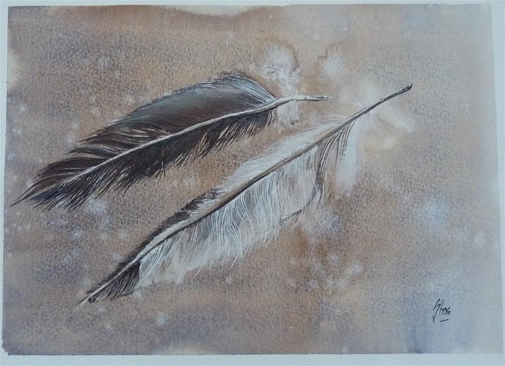 """""""Two Feathers"""" original fine art by Martin Stephenson"""