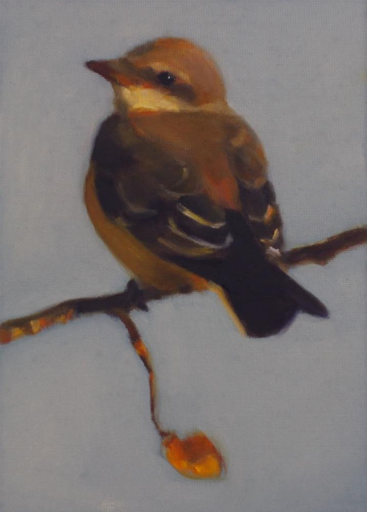 """Baby Kingbird"" original fine art by Pamela Poll"