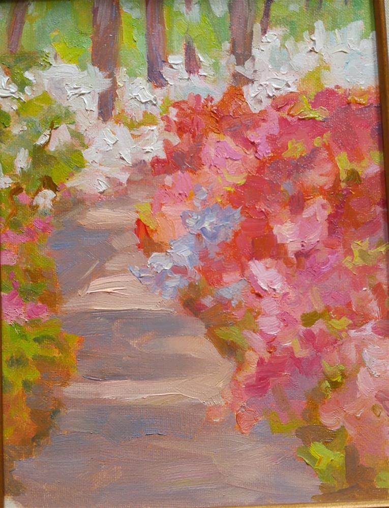"""Azalea Hill at Jenkins Arboretum"" original fine art by angela scully"
