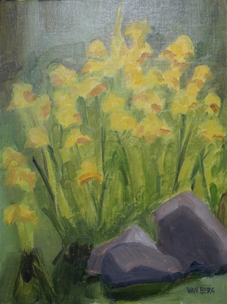 """Littleton Irises"" original fine art by Catherine Van Berg"