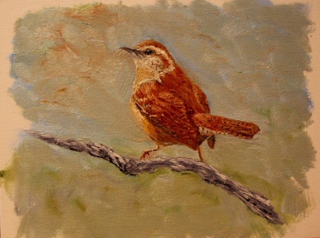 """Carolina Wren"" original fine art by Mary Datum"
