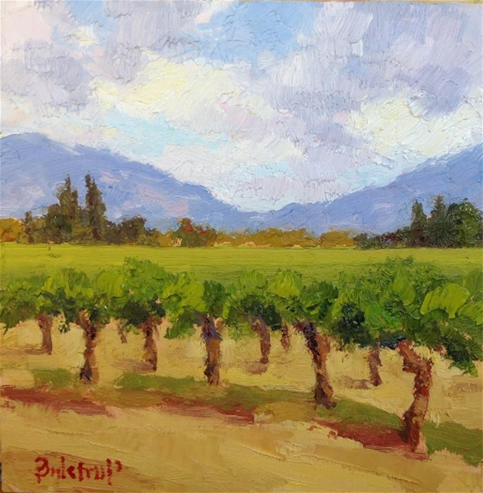 """Vineyard Shadows"" original fine art by Mark Bidstrup"