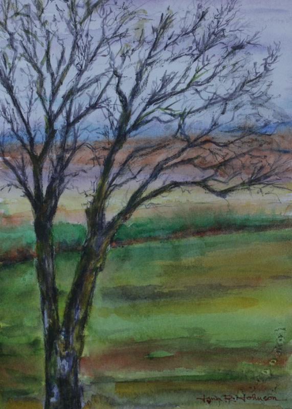 """McMinnville Oak"" original fine art by Jana Johnson"