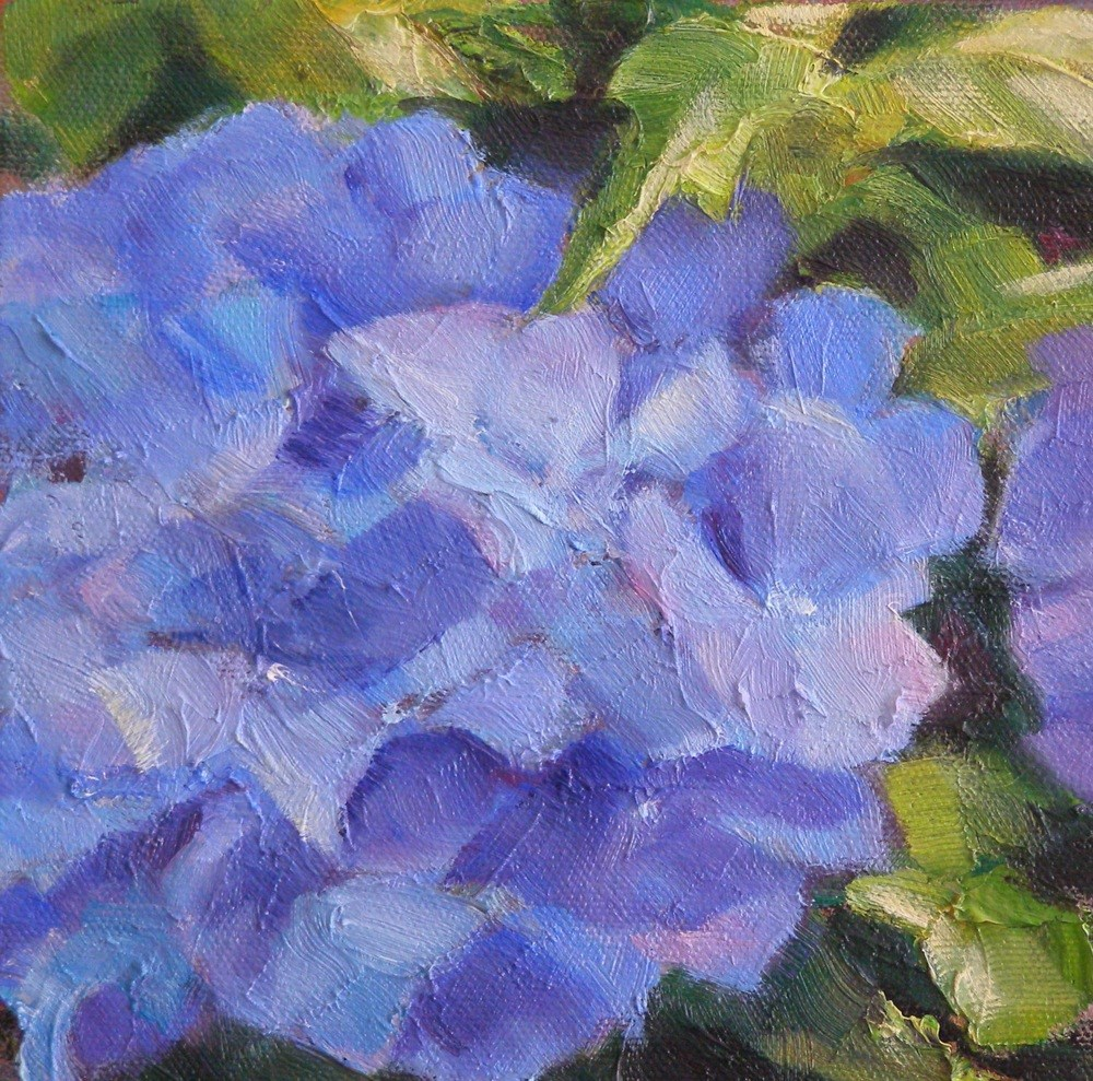 """Hydrangea, 6x6 Oil on Canvas"" original fine art by Carmen Beecher"