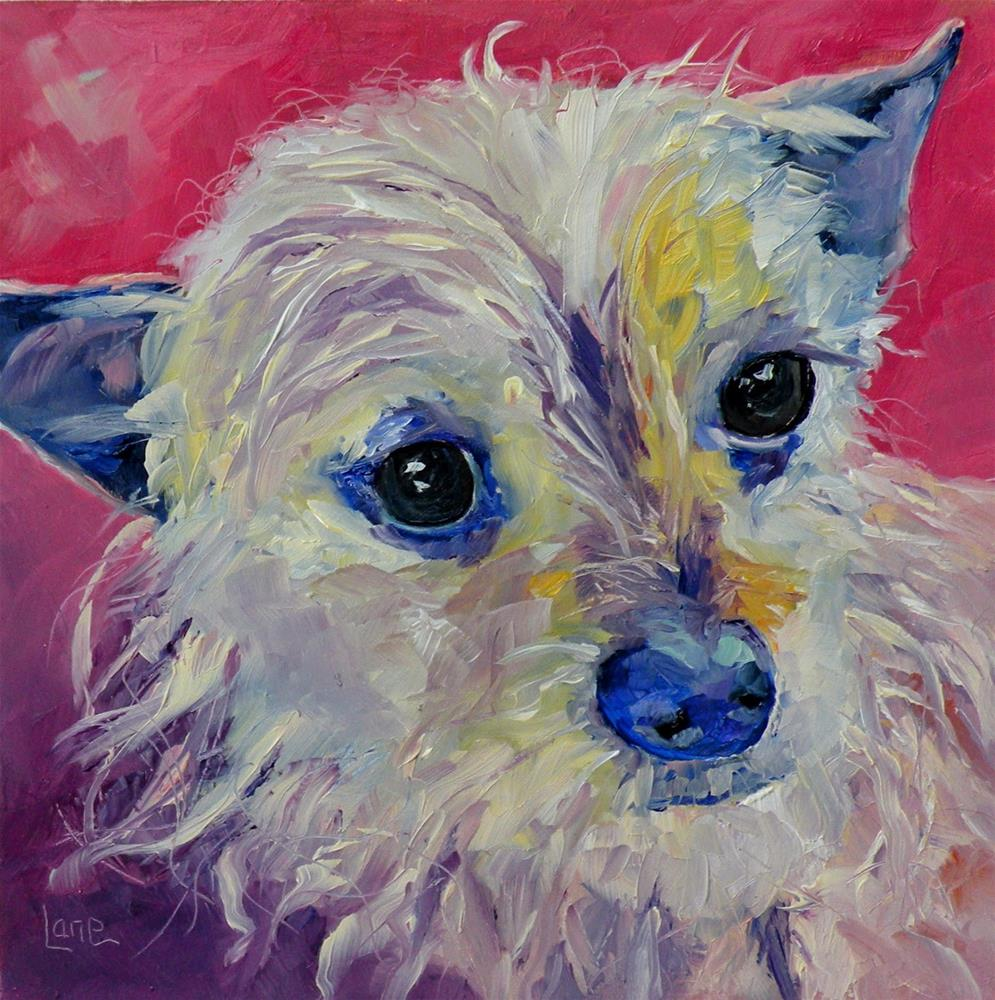 """IZZY 85/101 OF 101 PET PORTRAITS IN 101 DAYS © SAUNDRA LANE GALLOWAY"" original fine art by Saundra Lane Galloway"