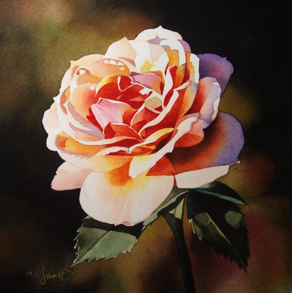"""Sunset Rose"" original fine art by Jacqueline Gnott, whs"