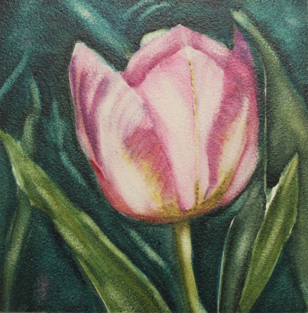 """Tulip Elegance"" original fine art by Christiane Kingsley"