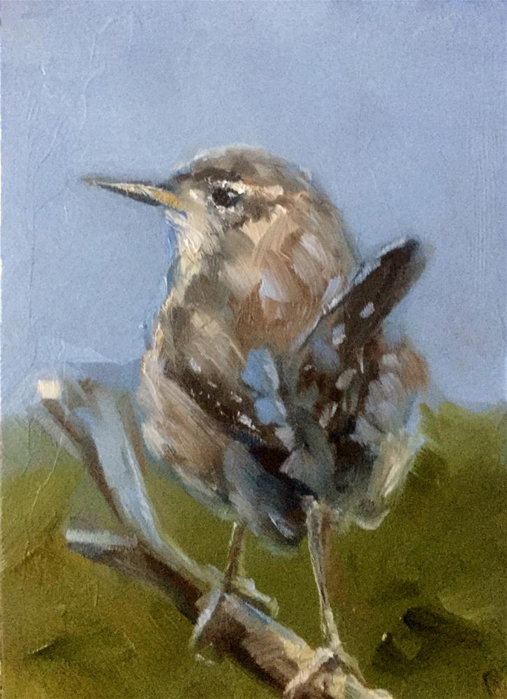 """Curious Wren"" original fine art by Gary Bruton"