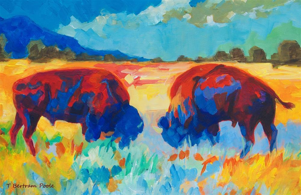 """Western Buffalo Art Bison Contest painting Bertram Poole"" original fine art by Bertram Poole"