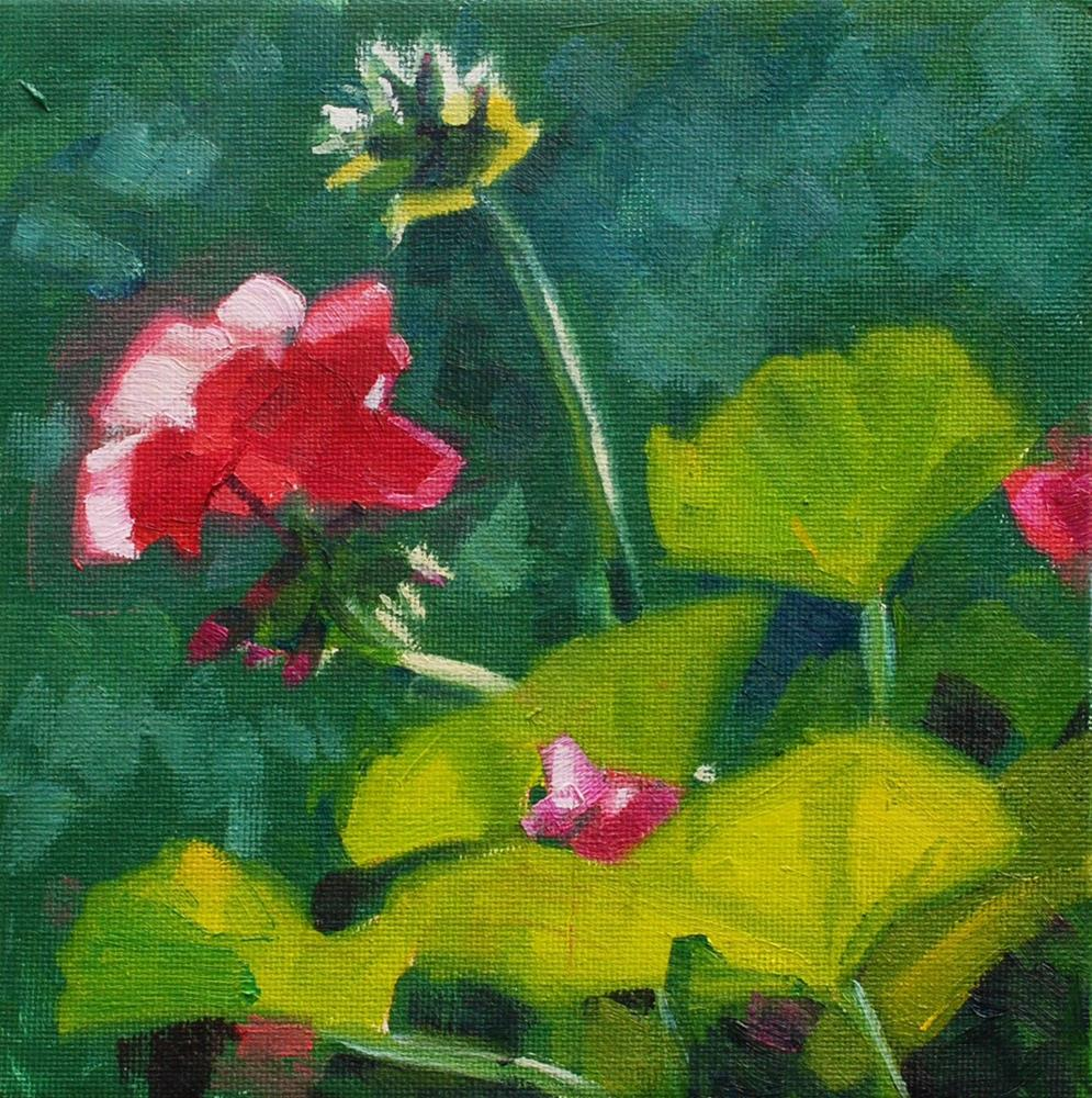 """Geraniums in the Afternoon Light 2"" original fine art by Susan McManamen"