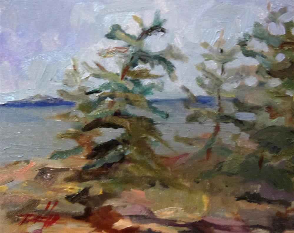 """""""Schoodic Point Acadia National Park Maine"""" original fine art by Delilah Smith"""