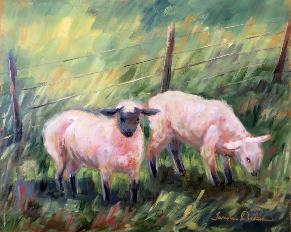 """A Pair of Sheep"" original fine art by Tammie Dickerson"