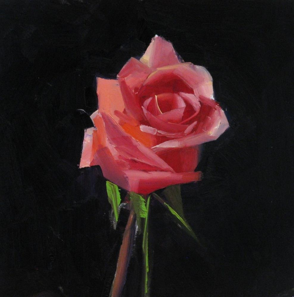 """Pink Rose Study 3"" original fine art by Qiang Huang"