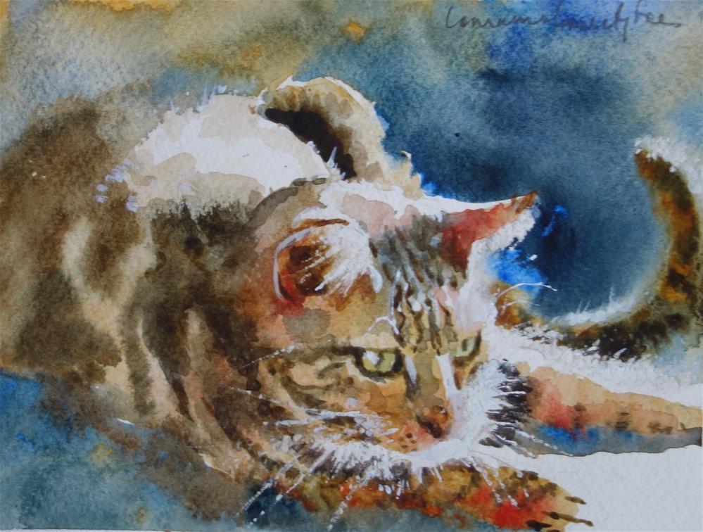 """Whiskers"" original fine art by Lorraine Lewitzka"