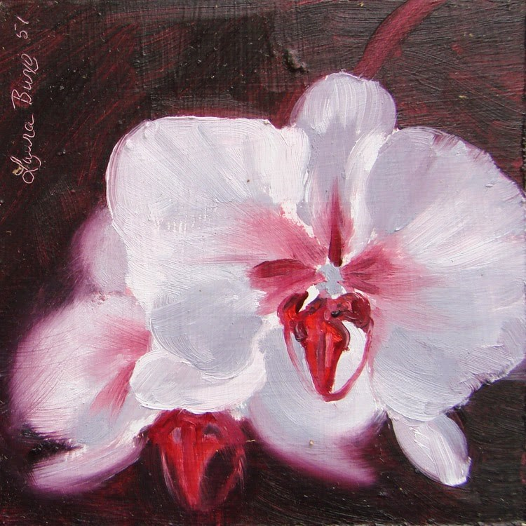 """Vicki's Orchid"" original fine art by Laura  Buxo"