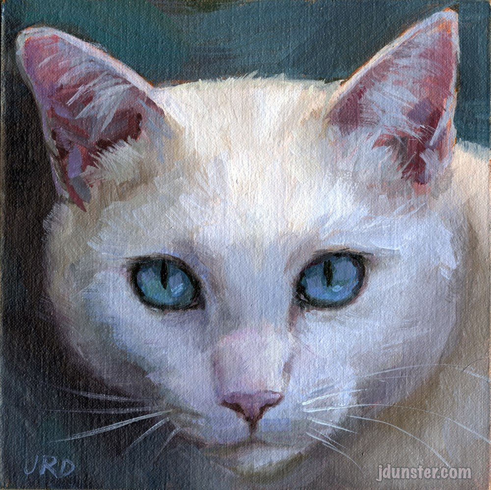 """White Innocence Cat Head"" original fine art by J. Dunster"