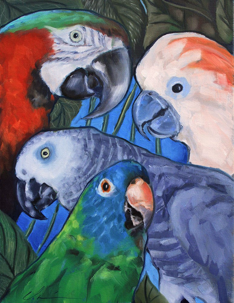 """Parrots Commission"" original fine art by Clair Hartmann"