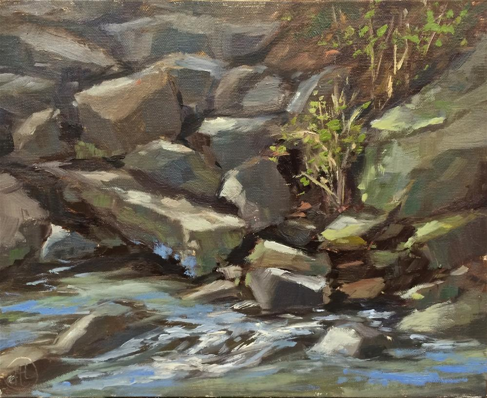 """mossy rocks"" original fine art by Dottie  T  Leatherwood"