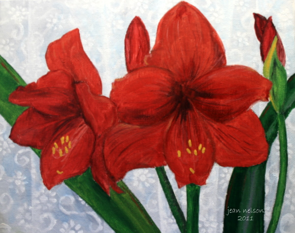 """""""Amaryllis"""" original fine art by Jean Nelson"""