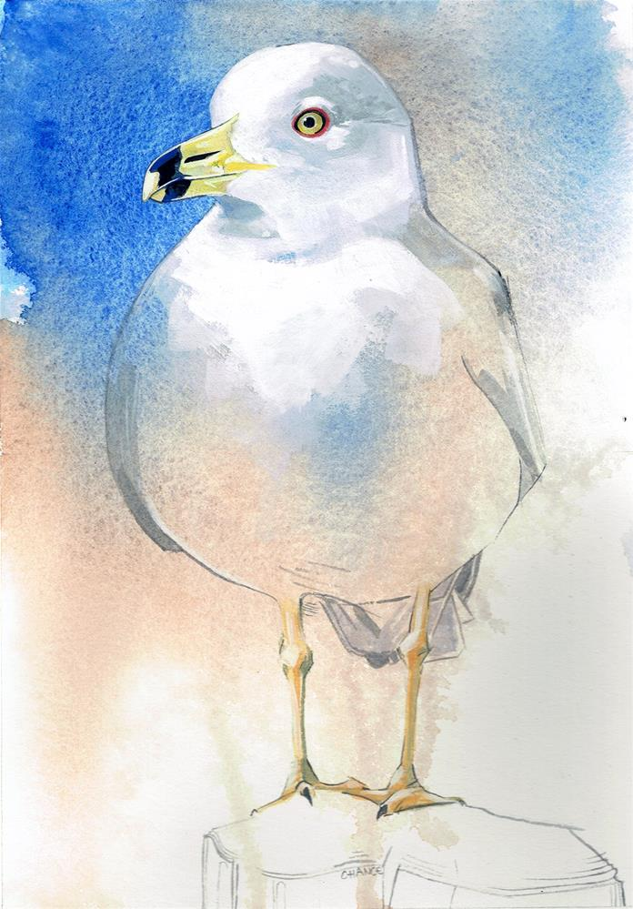 """No. 0 Seagull"" original fine art by Annabel Chance"