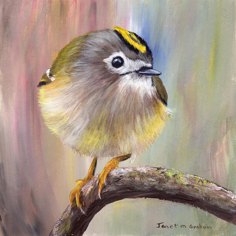 """Goldcrest"" original fine art by Janet Graham"