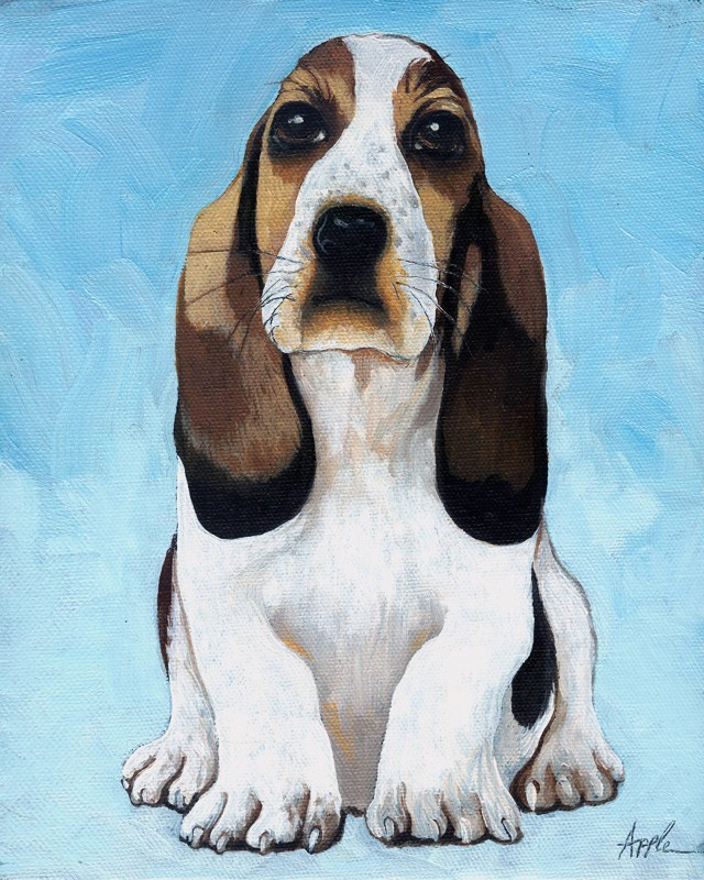 """Baby Basset - animal portrait"" original fine art by Linda Apple"