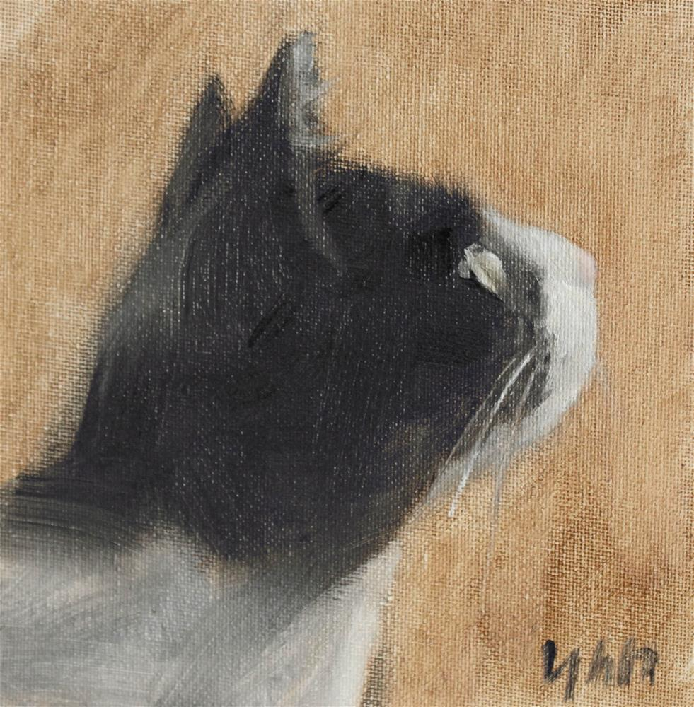 """cat"" original fine art by Yuehua He"