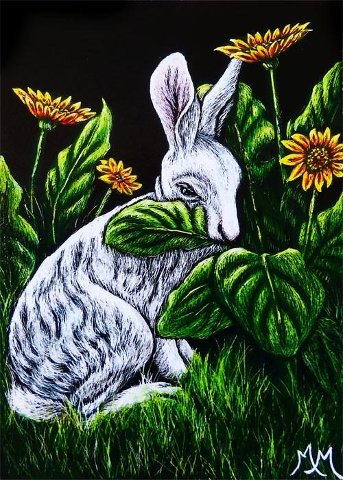 """Nibbling the Daisies"" original fine art by Monique Morin Matson"