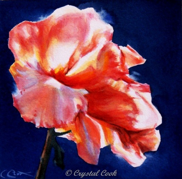 """Diaphanous"" original fine art by Crystal Cook"