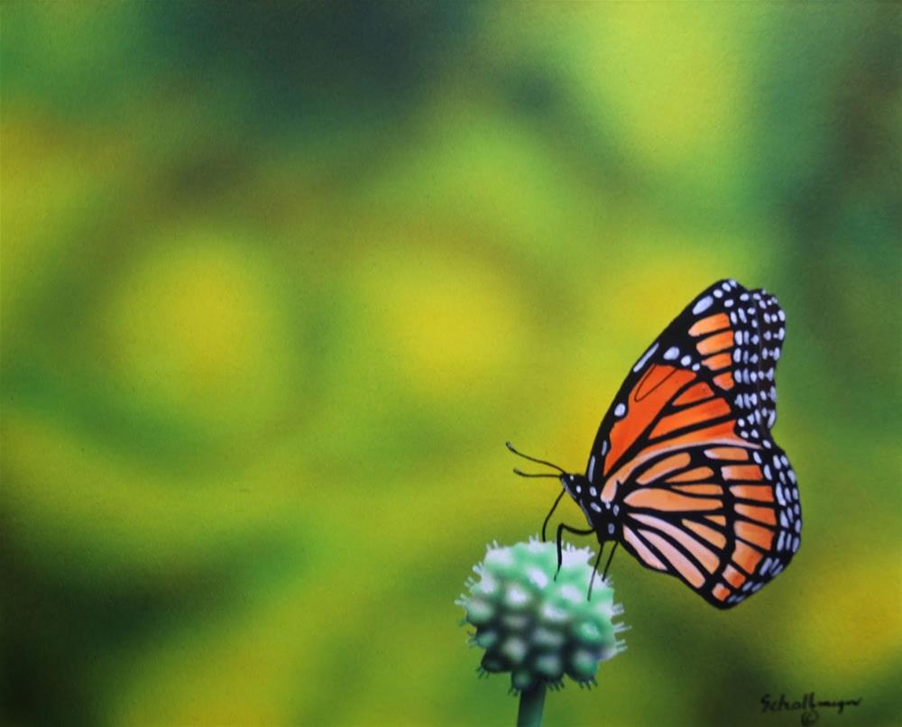 """July Butterfly"" original fine art by Fred Schollmeyer"