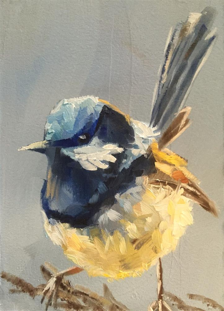 """Fairy Wren, Almost Sunset"" original fine art by Gary Bruton"