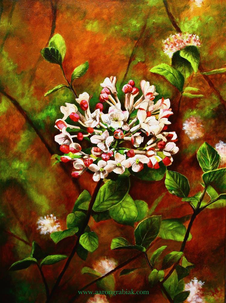 """Koreanspice Viburnum"" original fine art by Aaron Grabiak"