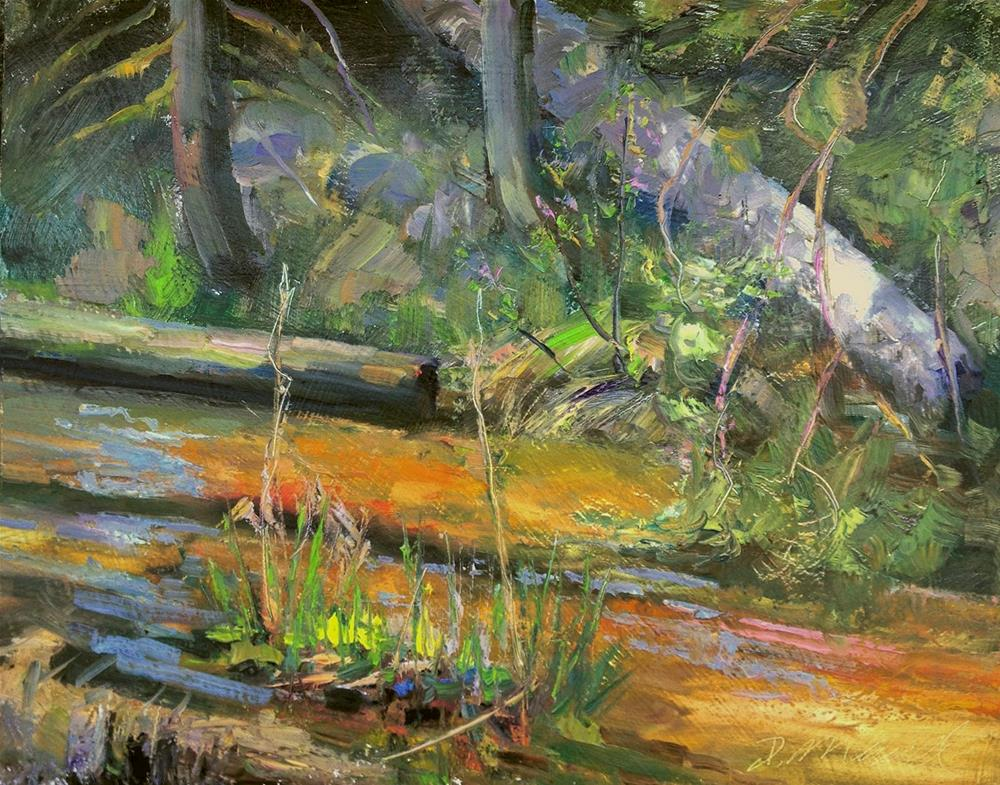 """Salmon Run Creek"" original fine art by Denise Maxwell"