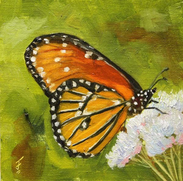 """Wildflower Butterfly"" original fine art by Jane Frederick"