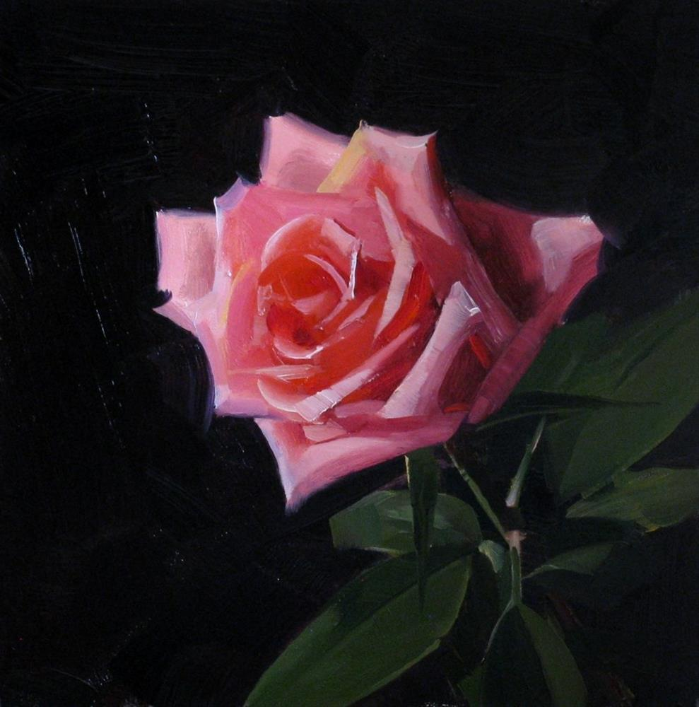"""Pink Rose Study 5"" original fine art by Qiang Huang"