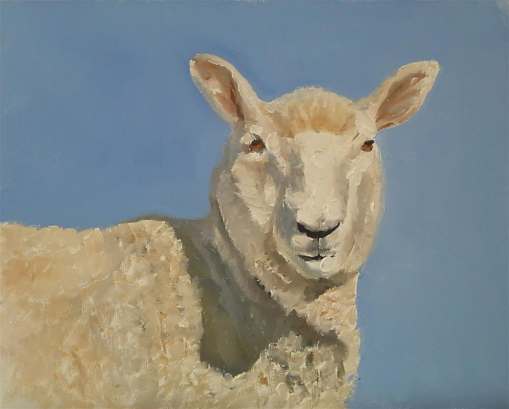 """Sheep"" original fine art by James Coates"