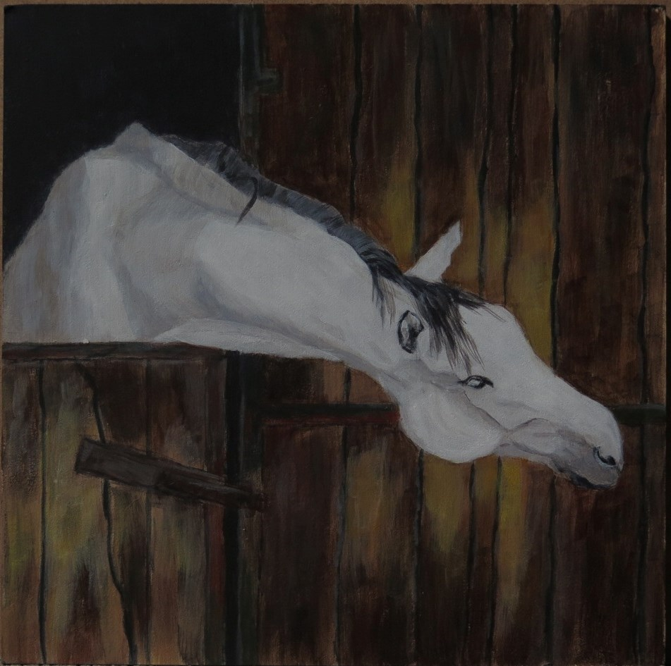 """Clever Grey"" original fine art by Kayla Smith"